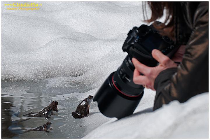 Alessandra (acremar.it) circondata dalle rane ormai confidenziali. Troppo vicine per riuscire a fotografarle!!