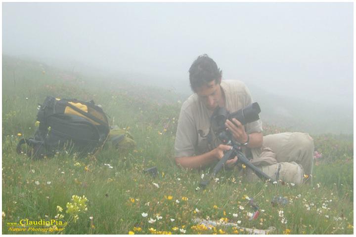 Francesco Tomasinelli nella nebbia ma all'opera!
