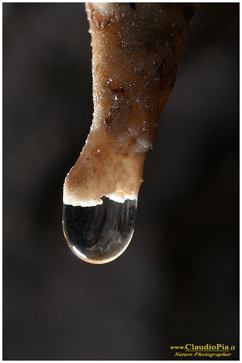 Val Graveglia, cave, mine, miniere, Nature photography, macrophotographt, drops, fotografia naturalistica, close-up, goccia, drop