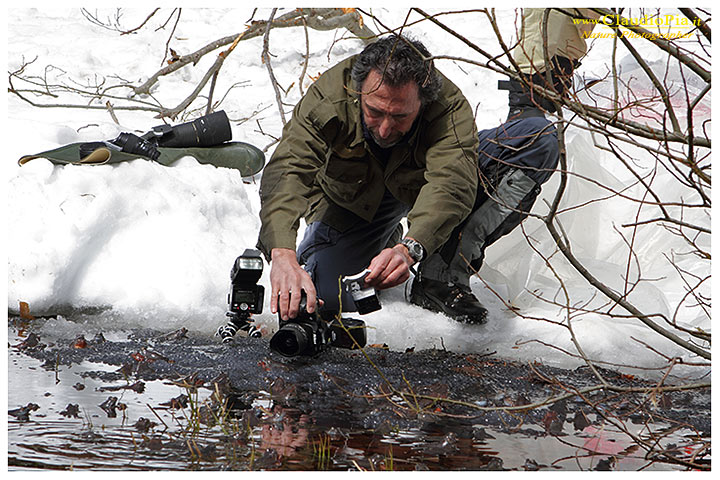 """Io al lavoro, qui è la mia """"FRENESIA"""" di fotografo e non quella sessuale delle rane a prevalere!!! (Foto di Rocco acremar.it)"""