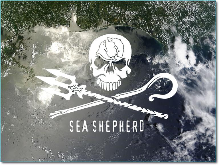 sea-shepherd-nel-golfo