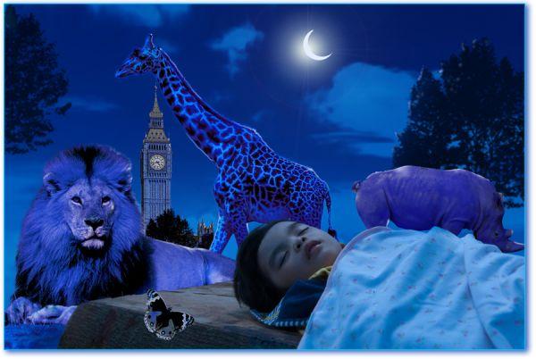 Una notte tra i leoni a due passi dal big ben imperial bulldog - Un letto di leoni ...