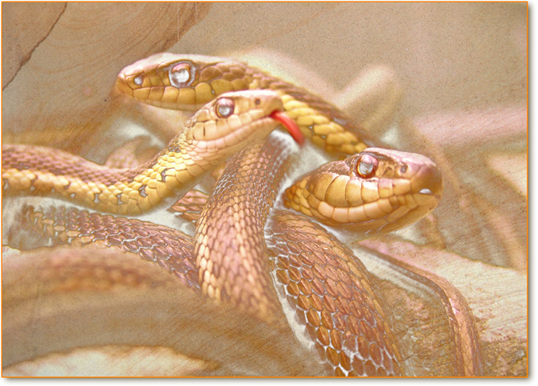 origine-serpenti