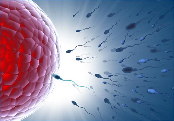 fertilità-small