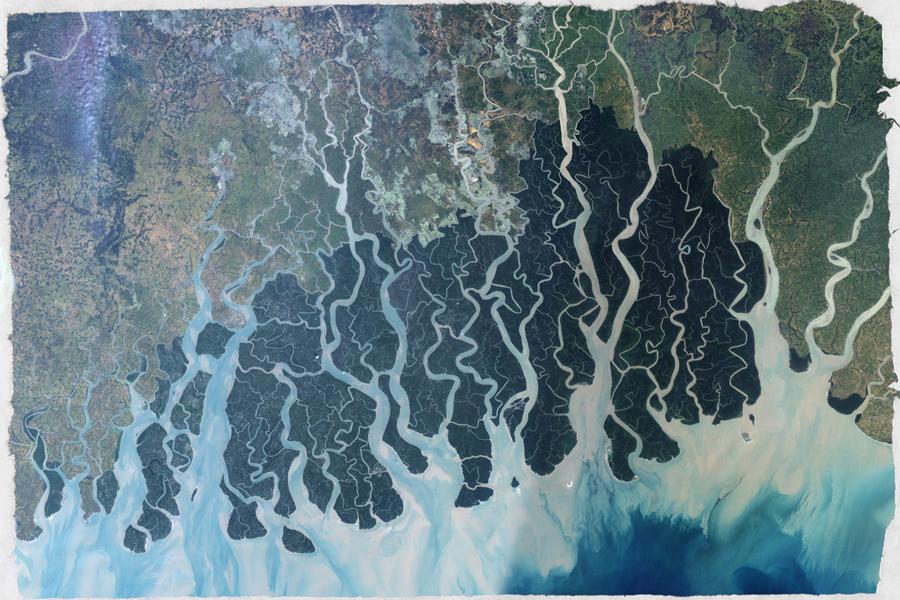 Sundarbans-new