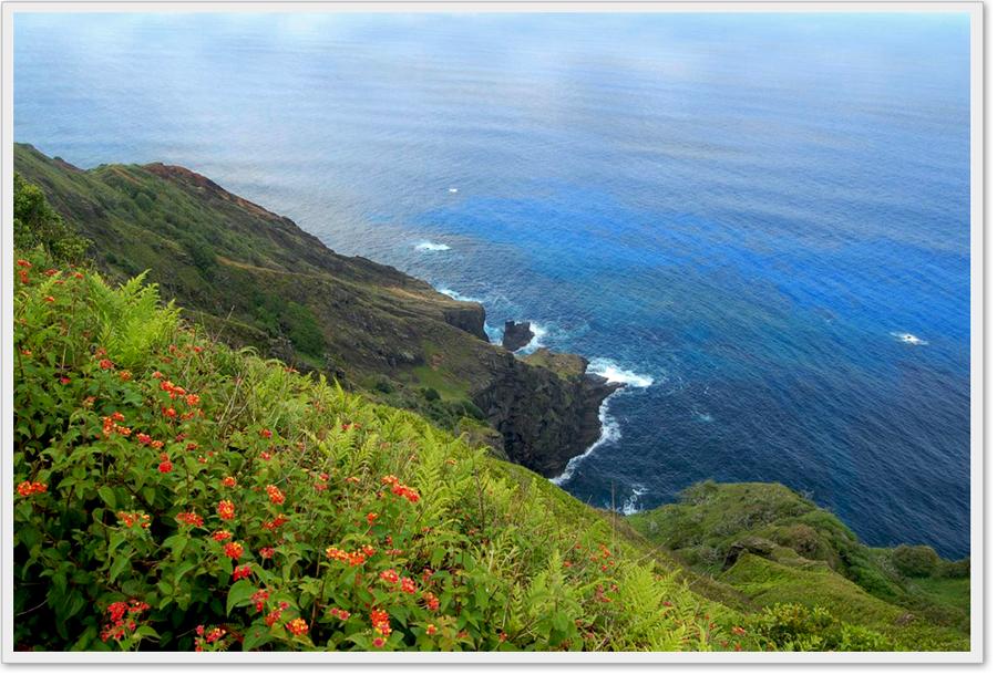 pitcairn-3