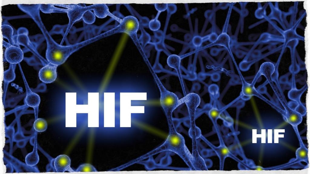 Fattore HIF
