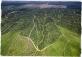 Olio di palma sostenibile: deforestazione e salute in gioco