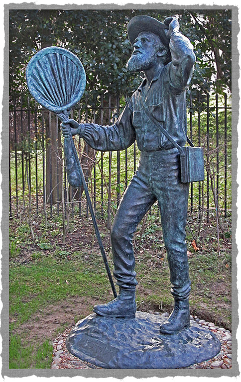 statue_of_Alfred_Russel_Wallace