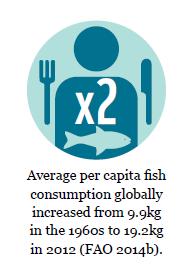fishcomsumption