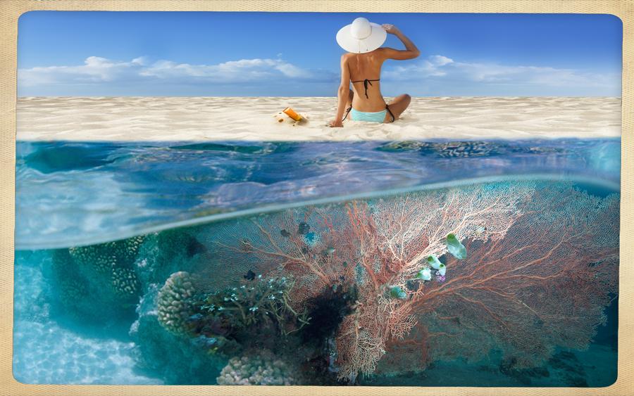 corallo-solari