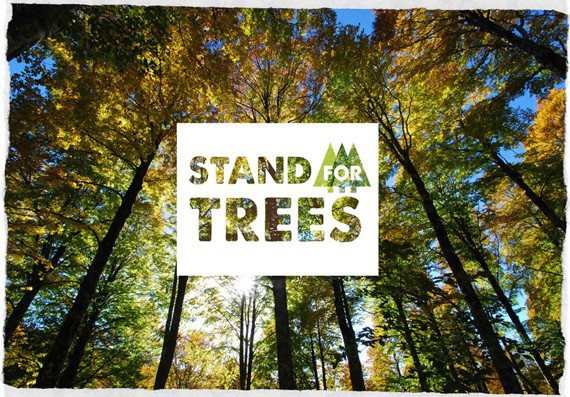 stand-for-trees-small