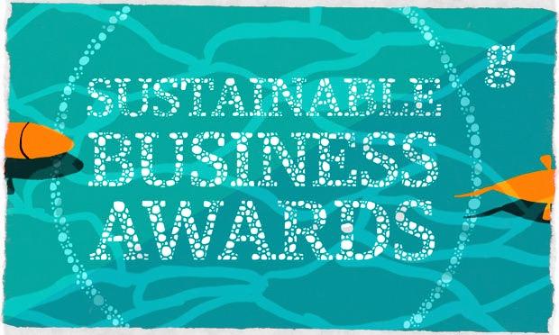 Guardian Sustainable Business Awards 2013 Promo