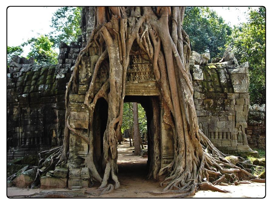 tempio 3