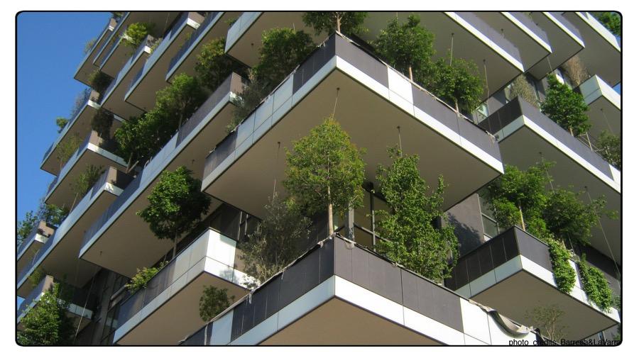 bosco verticale 2