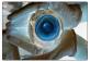 L'occhio del mistero